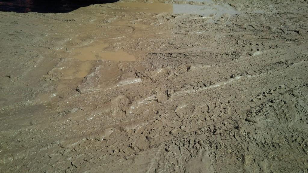 muddy3